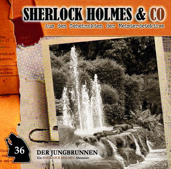 Sherlock Holmes und Co. CD 36: Der Jungbrunnen (1. Teil)